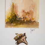 bronzes, petits, nebula